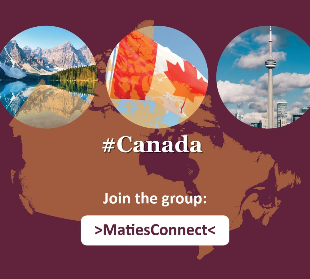 Maties Connect ENG